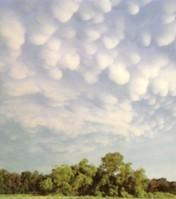Cumulonimbus with Mammatus